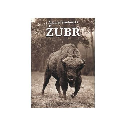 Żubr - Andrzej Stachurski [opr. twarda]